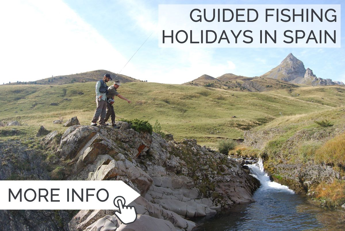 Spain fly fishing guides in the pyrenees pyrenees fly for Fishing rod in spanish