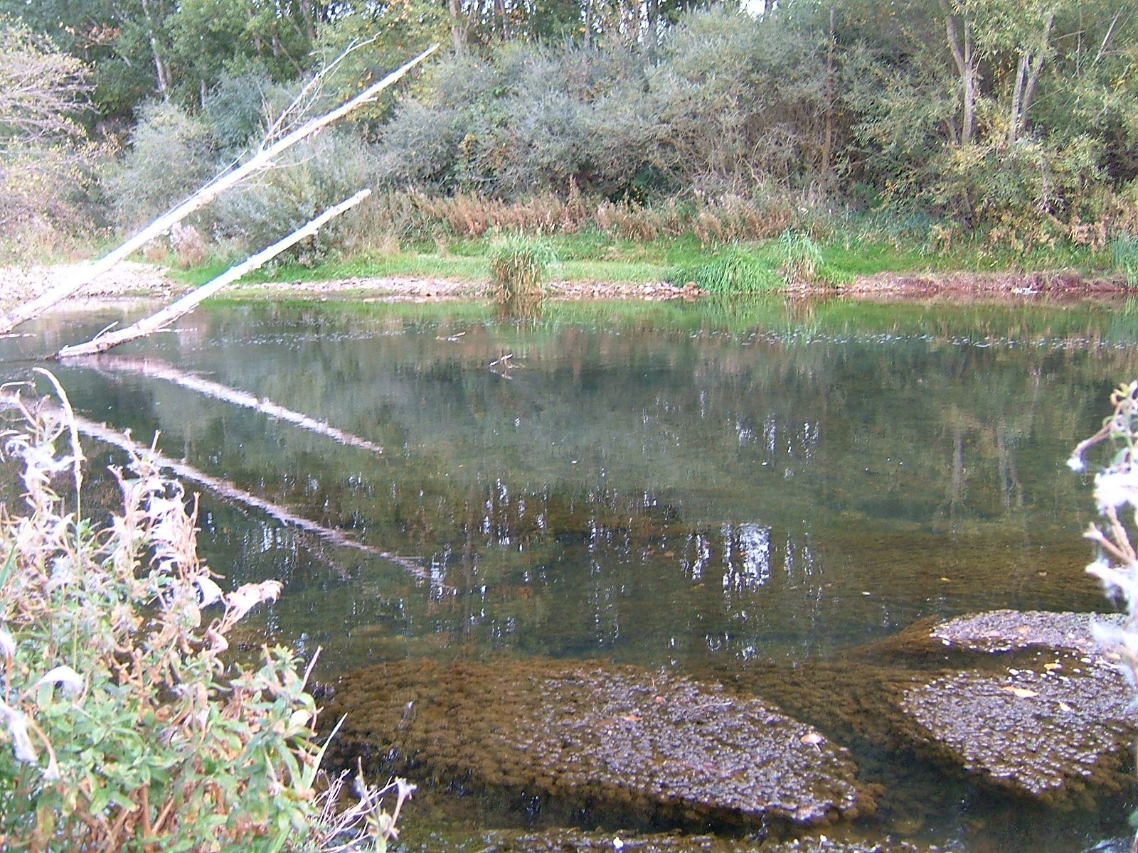 Top 10 rivers for fly fishing in spain for Best fly fishing in us